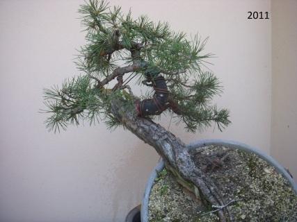 apr2011 013
